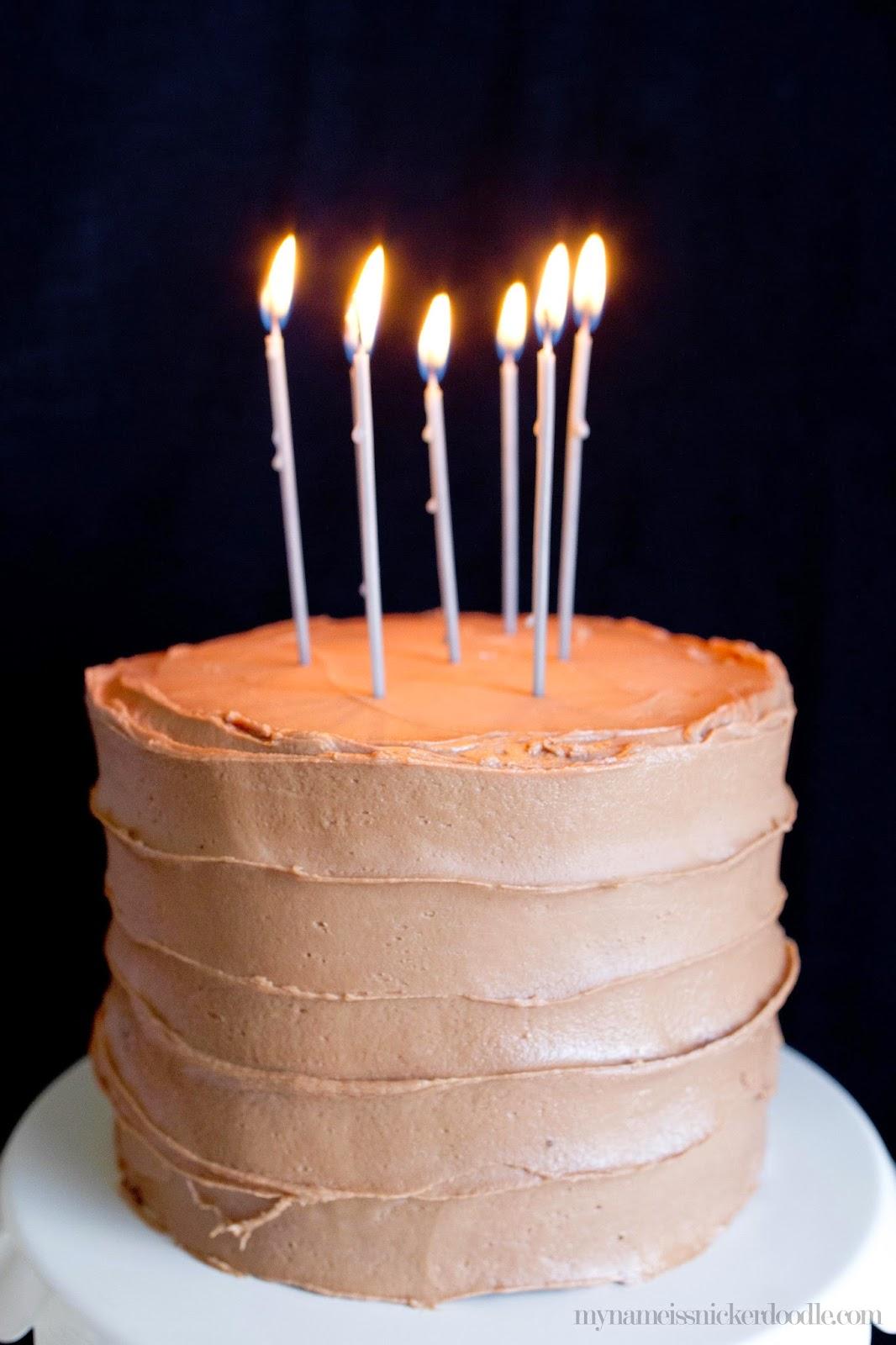 Homemade Birthday Cake Ice Cream My Name Is Snickerdoodle