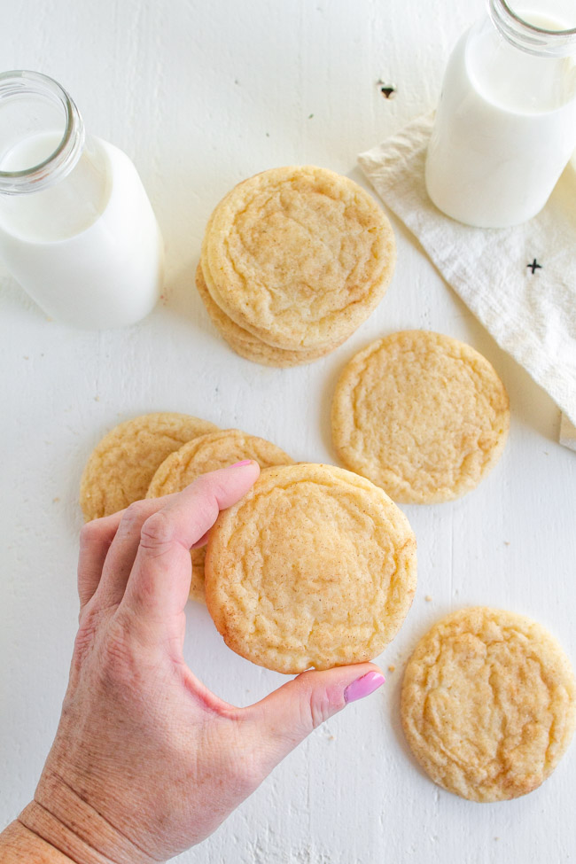 A hand holding a snickerdoodle cookie.