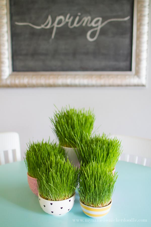 Easter grass centerpiece on a blue table