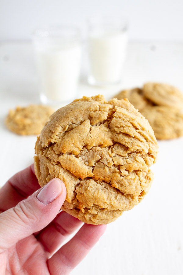 Bakery Style Big Peanut Butter Cookie