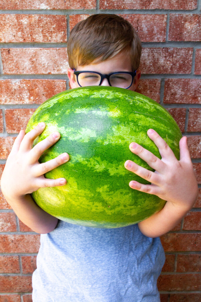 How To Pick The Best Watermelon by testing to see how heavy it is.